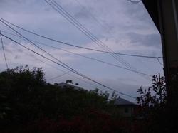 Pic_0121