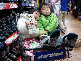 ショッピングカートは