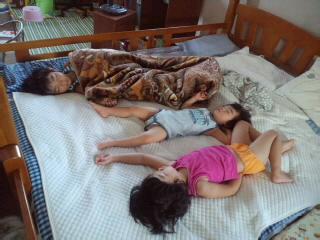 寝床の確保