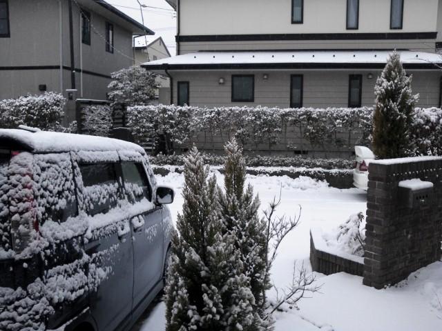 パンク、雪、ママチャリ