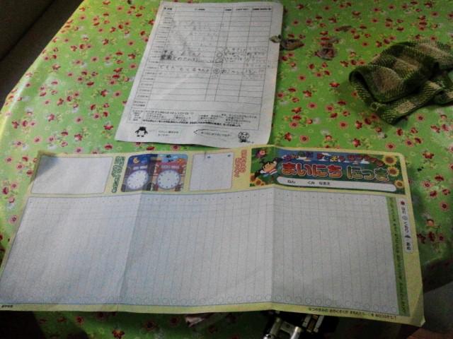 謎の一行日記が2種類 と イカさん